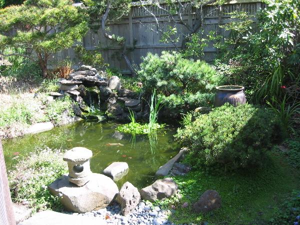 http://www.luini.com/gallery/2003-03_Ren-Brown-Gallery/IMG_0105.jpg